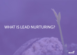 What is Lead Nurturing Thumbnail